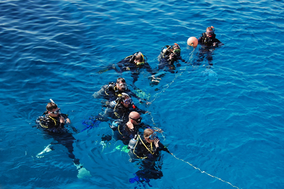 PADI Scuba Diving Career Courses offered at Dive HQ Westhaven
